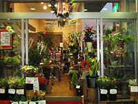 イオン加賀の里店
